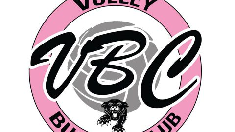 Le Volley Business Club est officiellement lancé