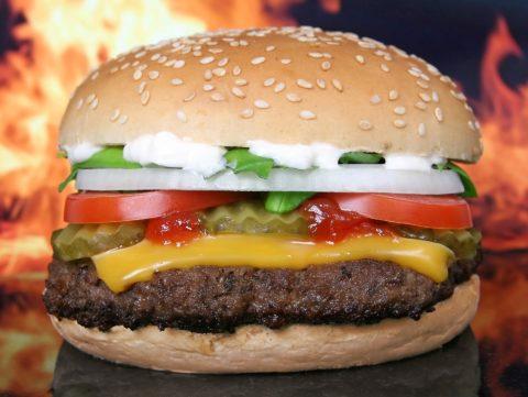 Restauration rapide dans le Puy de Dôme, chacun veut sa part du hamburger